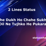 2-lines-status