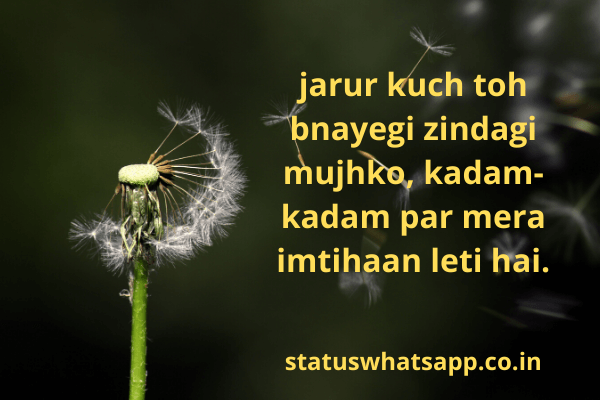 Zindagi Shayari-statuswhatsapp
