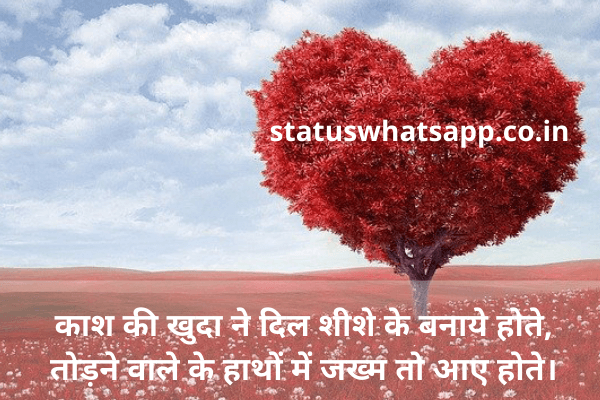 dil-shayari-download-statuswhatsapp