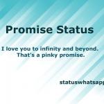 promise-status