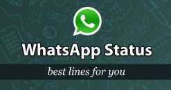 Best Whatsapp Status in English – Attitude, Love, Sad, Cool Status